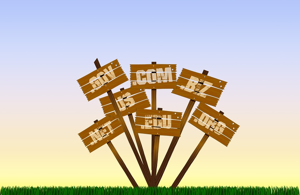 Choosing and Registering a Campaign Domain Name